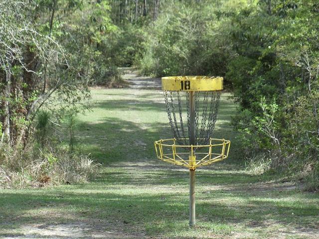 Shepard SP frisbee golf